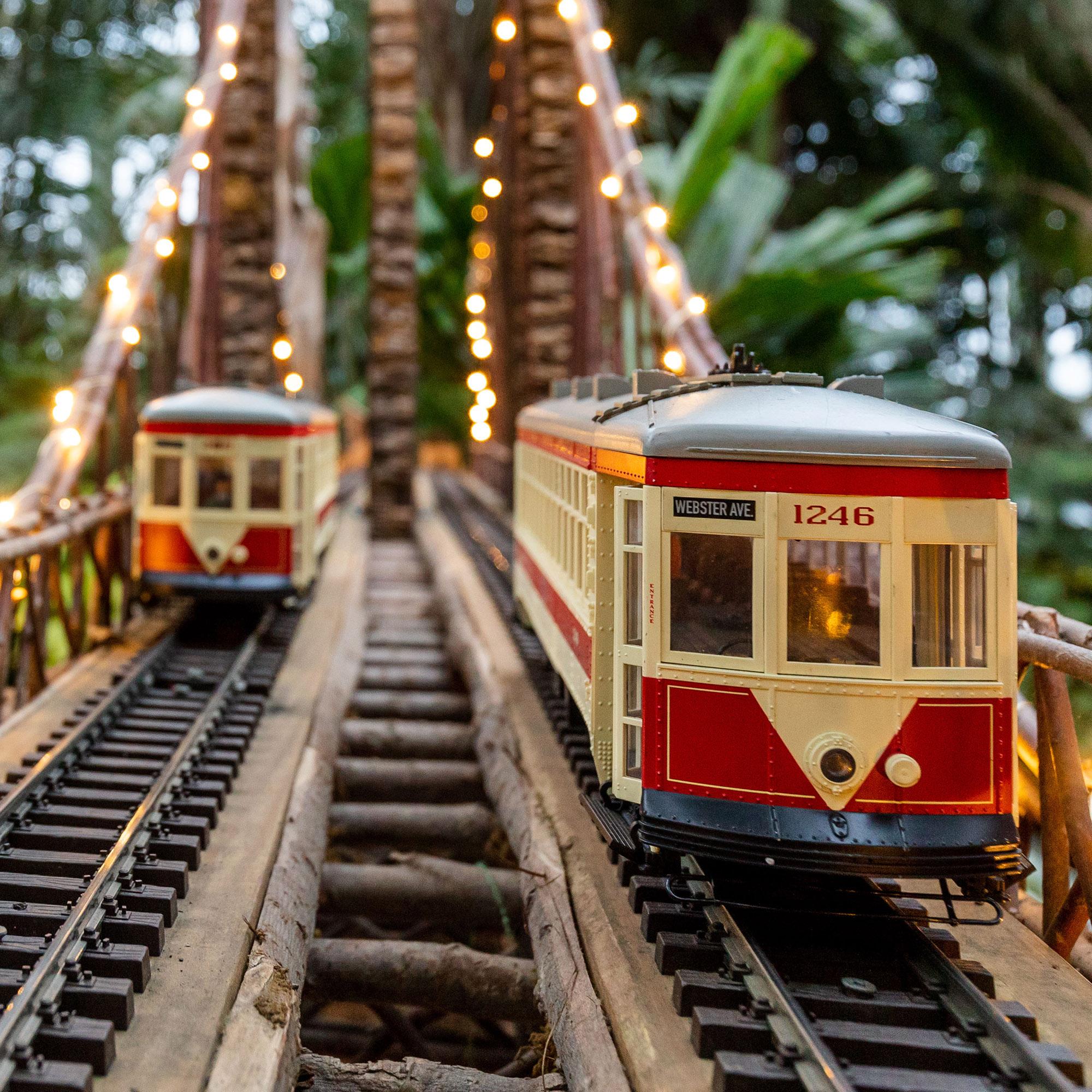 The <em>Holiday Train Show</em>