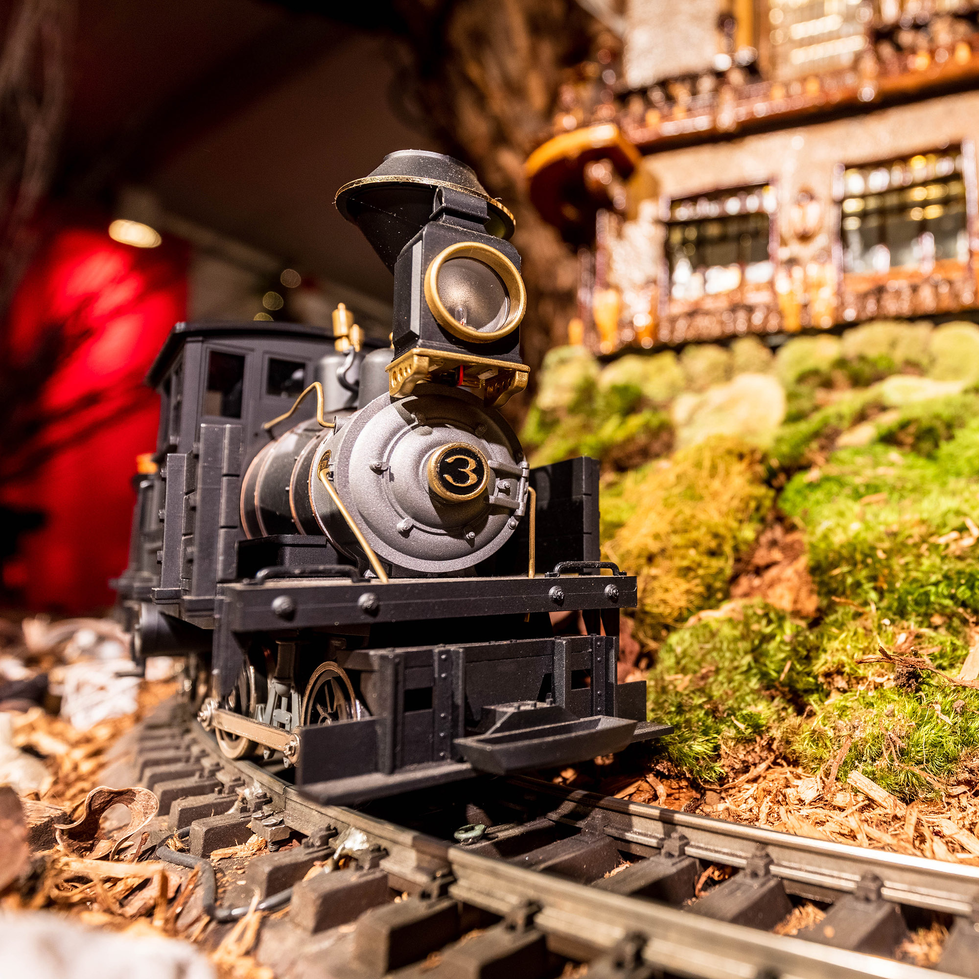 The <em>Holiday Train Show</em>