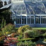 Perennial Garden FALL 02 - JD