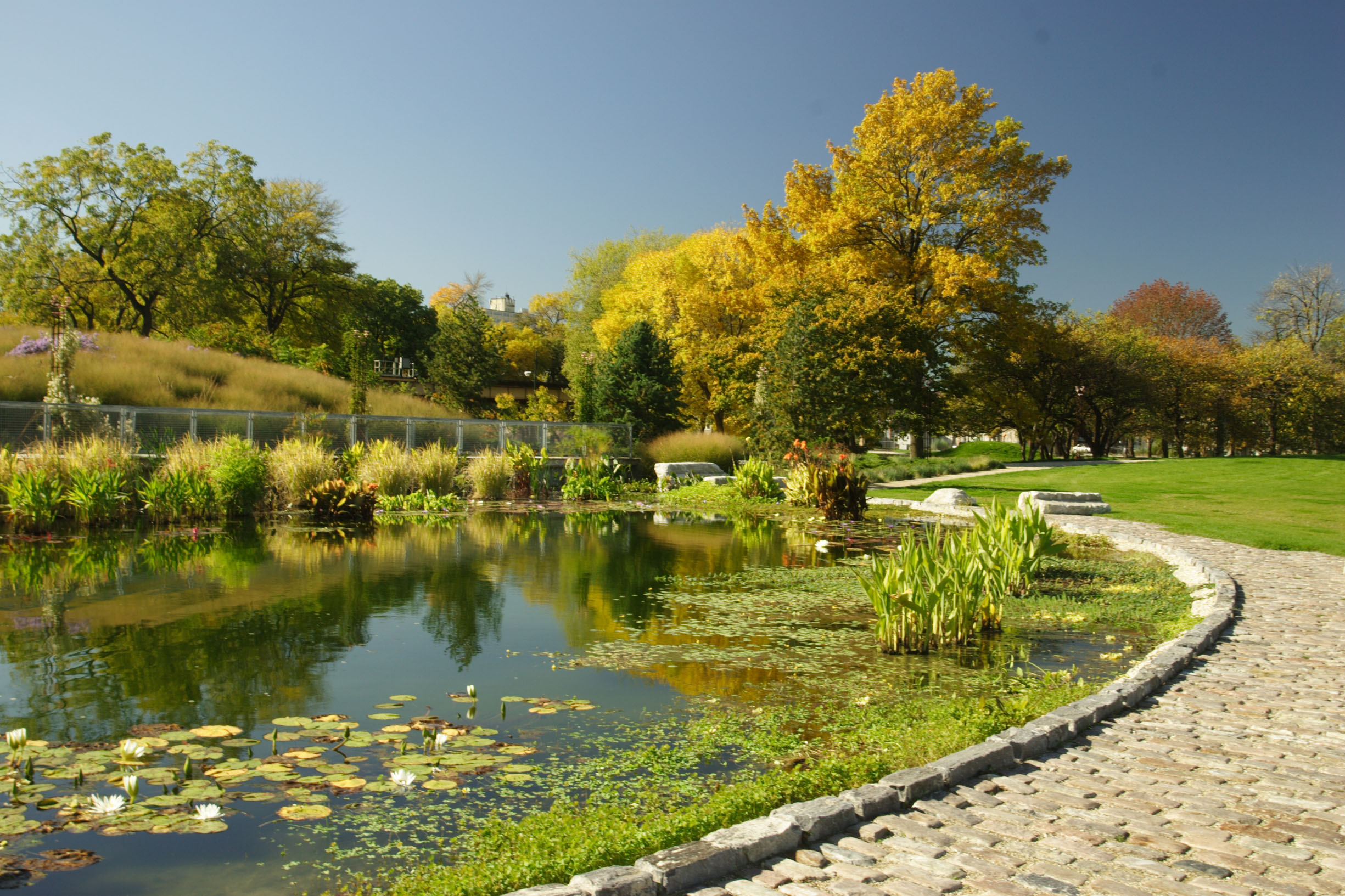 Beautiful city park landscape for Park landscape design