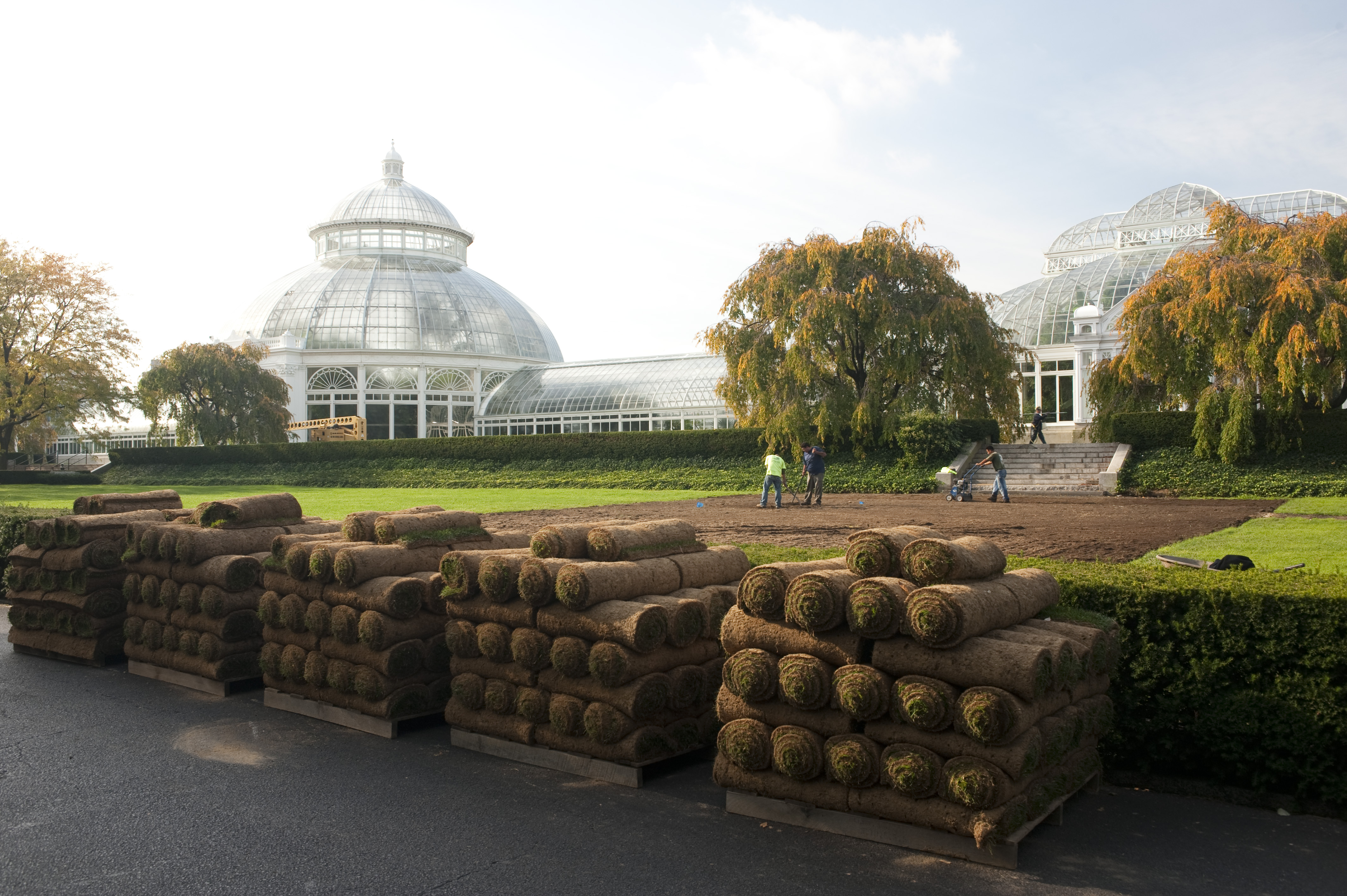 Plant Talk - Page 358 of 421 - Inside The New York Botanical Garden