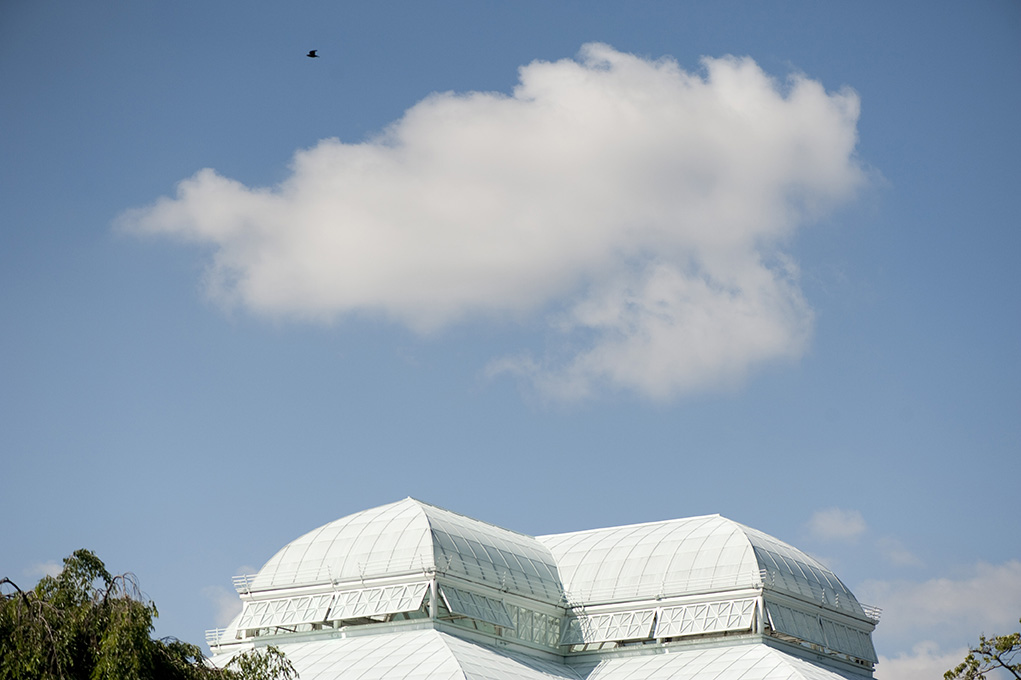 Sky Over the Conservatory