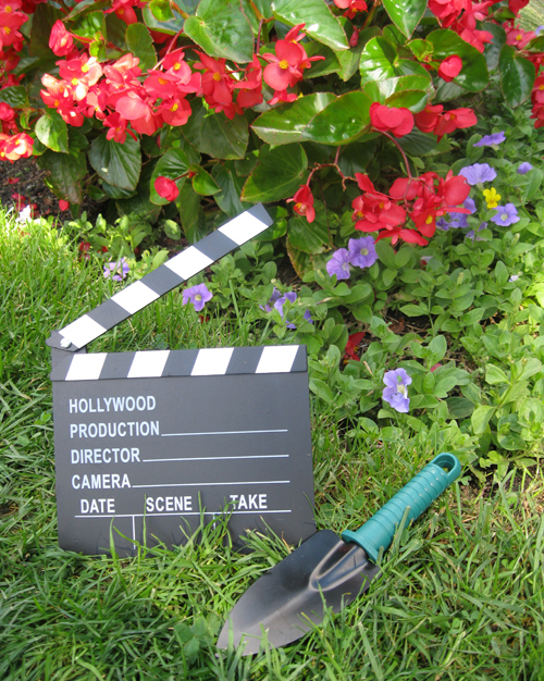 Horticultural Hollywood - Plant Talk