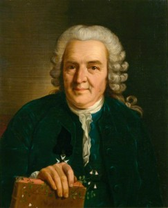 Carl Linnaeus, author of Species Plantarum.