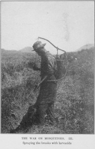 The war on mosquitoes III. (1913)  From the digital collections of the New York Public Library