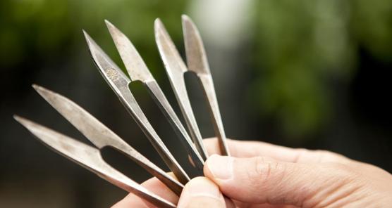 Kodai Nakazawa's tools of the trade