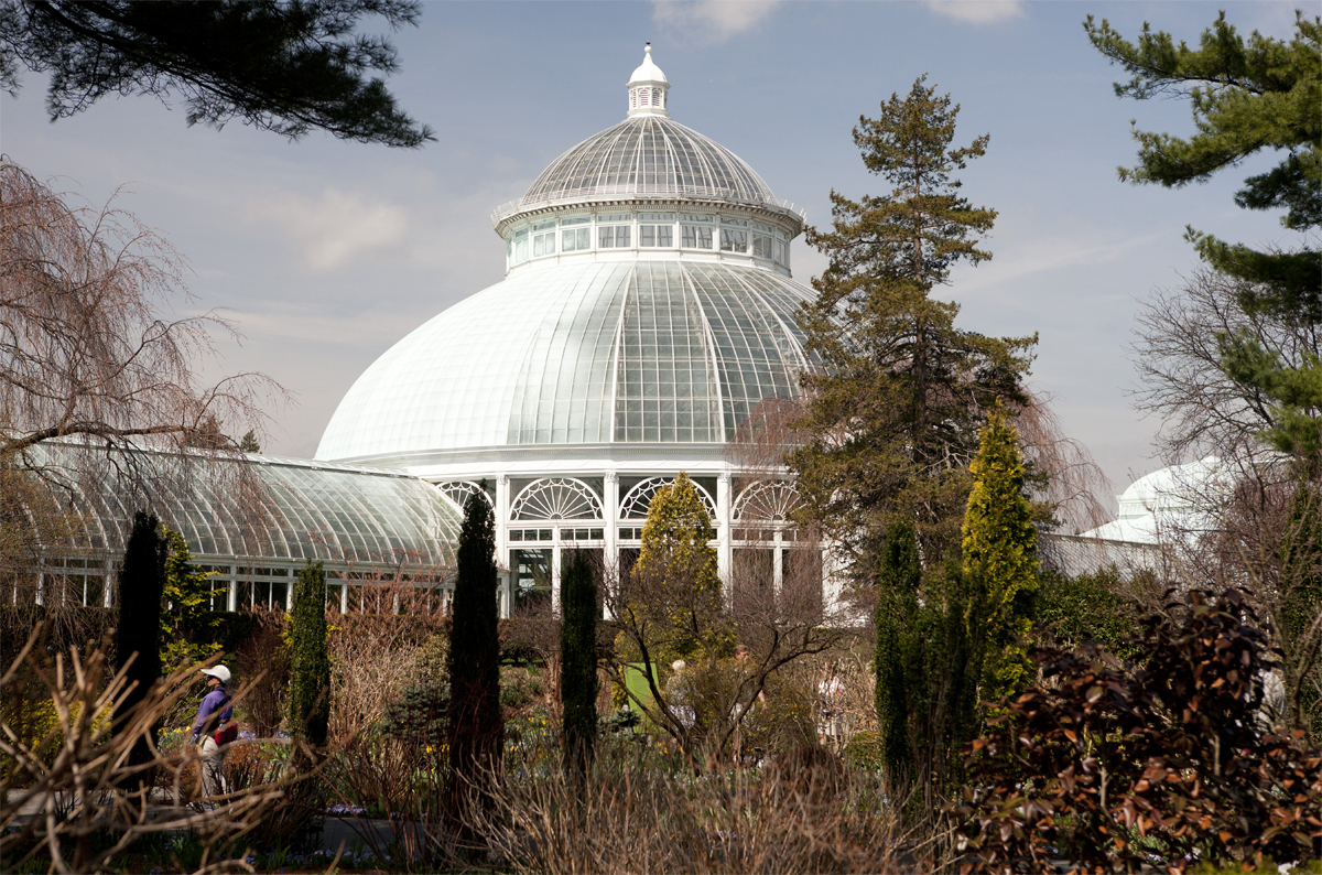 Plant Talk - Page 123 of 421 - Inside The New York Botanical Garden