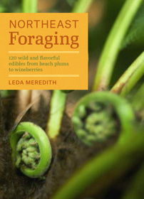 Northeast Foraging: 120 Wild and Flavorful Edibles from Beach Plums to Wineberries  Leda Meredith
