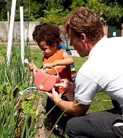 0514-family-garden-toby-thumbnail-250x280