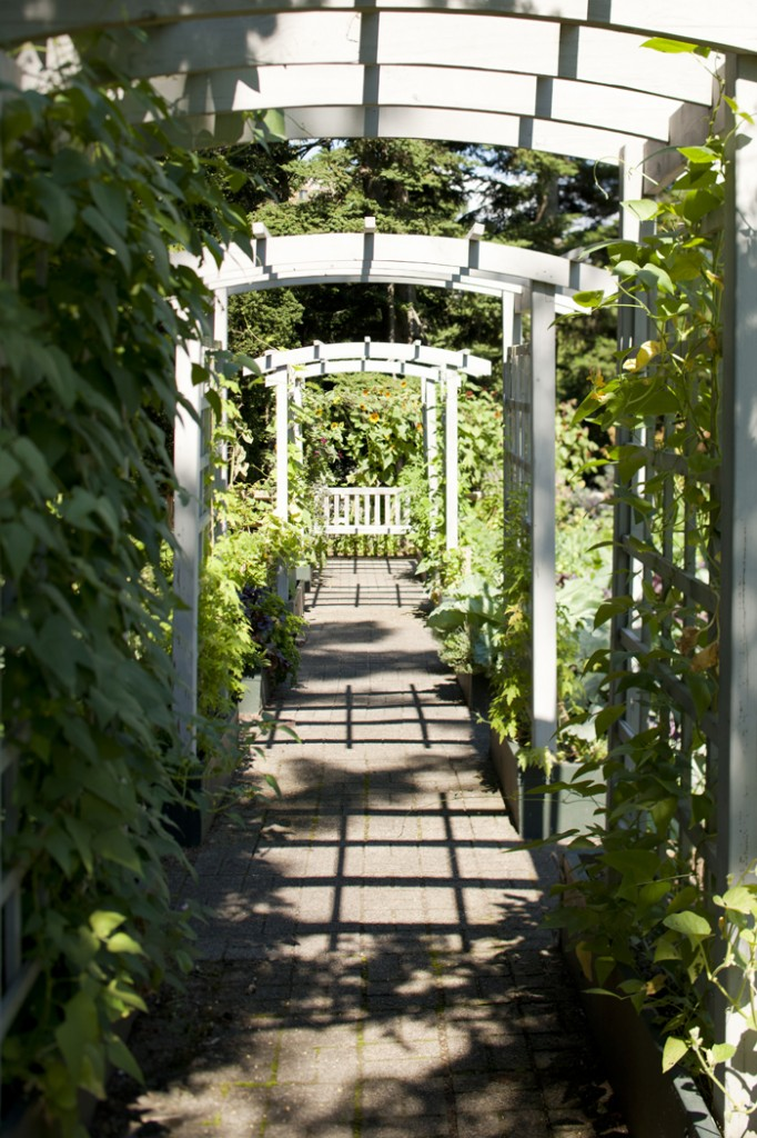 Home Gardening Center