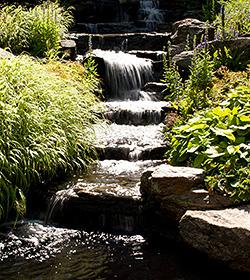 Rock Garden Cascade NYBG