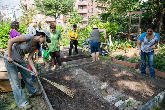Bronx Green Up Taqwa Community Garden Highbridge Bronx Tamara Bogolasky