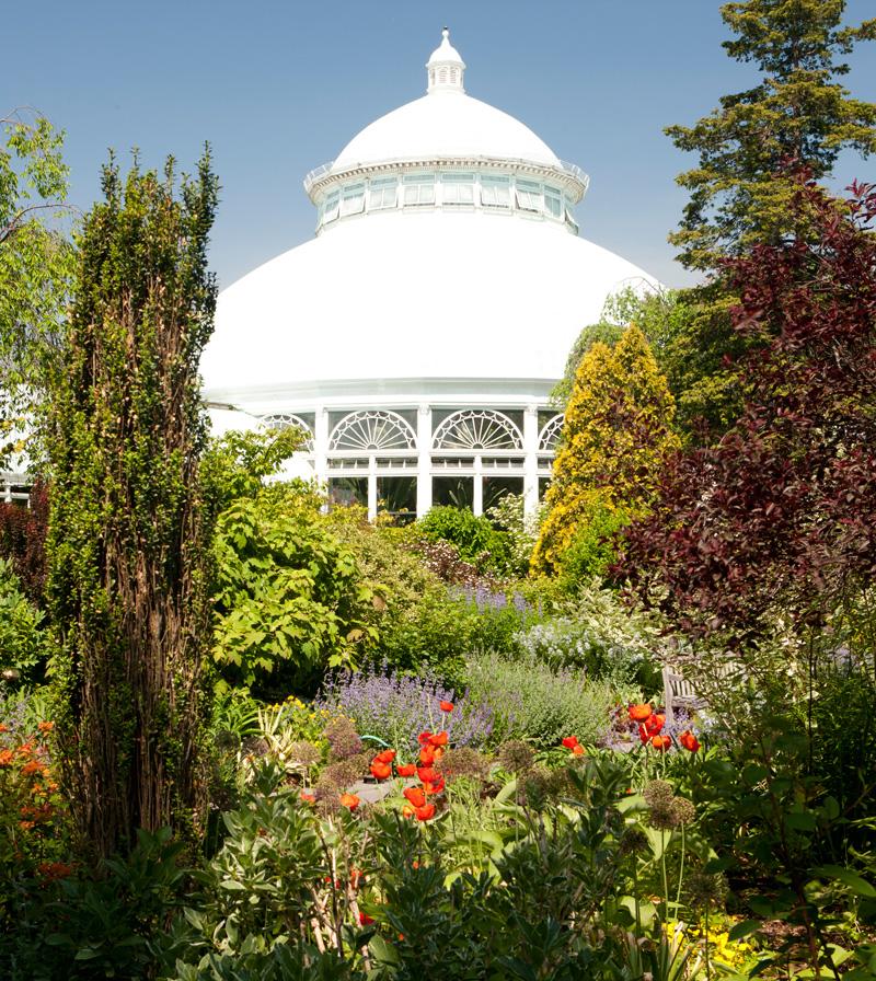 Enid A Haupt Conservatory Dome Perennial Garden