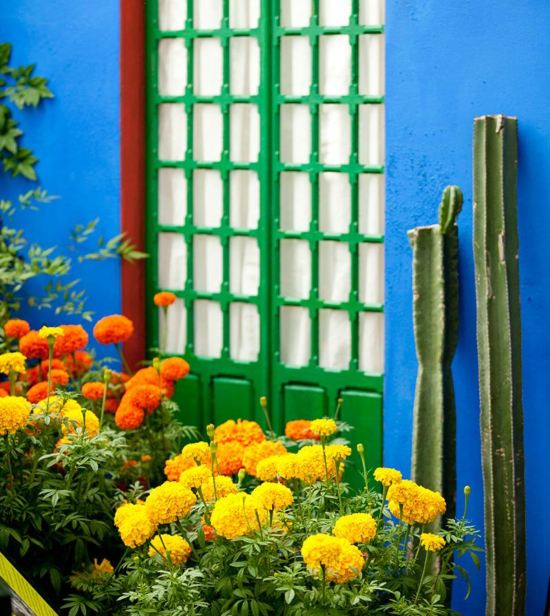 Frida Kahlo Art Garden Life New York Botanical Garden Haupt Conservatory Casa Azul