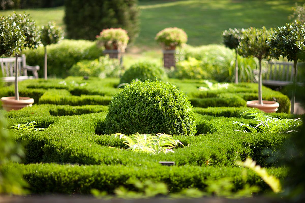 0815-herb-garden-1200x800