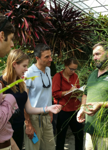 Marc Hachadourian showing a horse-tail plant (Equisetum) to Humanities Fellows