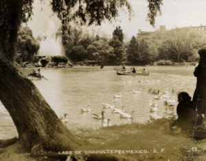 The Lake at Chapultepec Park, Mexico City. Photo ca. 1920.