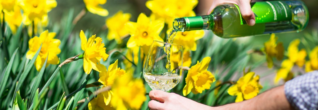 Daffodil Celebration & Wine Weekend