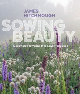 Photo of Sowing Beauty