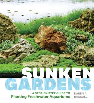"The cover of ""Sunken Gardens."""