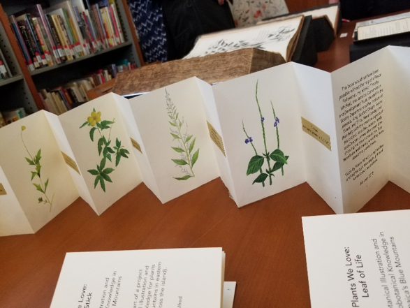 Keren Alfred's hand-made booklets on the plants of Jamaica