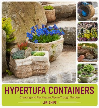 Cover of Hypertufa containers