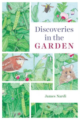 Cover of Discoveries in the Garden