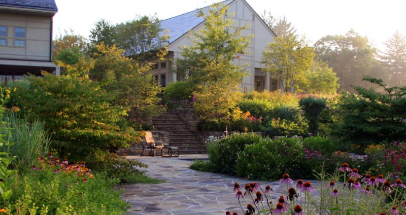 Photo of a garden