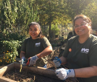 NYC Compost Project