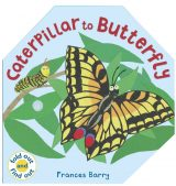 Image of the cover of Caterpillar to Butterfly
