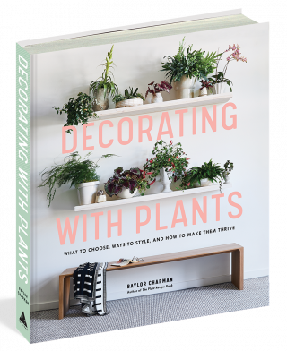 Photo of the cover of Decorating with Plants
