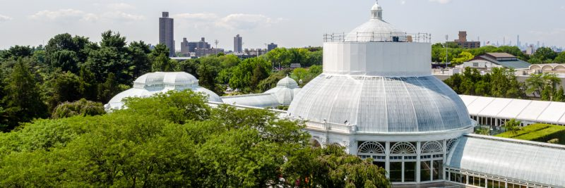 Photo of the Haupt Conservatory being restored