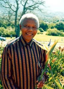 Nelson Mandela with his namesake bird of paradise cultivar