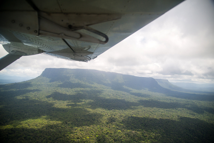 Our first view of the Tafelberg, rising from the surrounding forest as we fly into Rudi Kappel airstrip