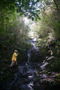 Eldis Becquer on an unnamed creek on the Caribbean slope of the Sierra Maestra