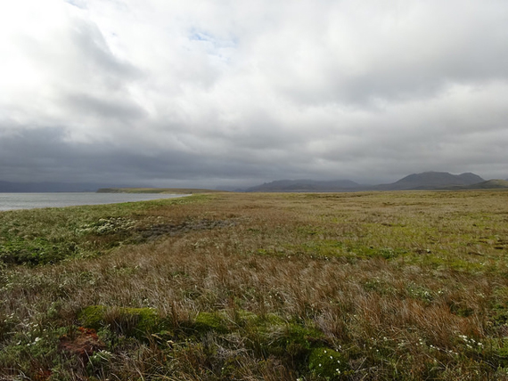 """The expansive face of Isla Grevy's """"Low Peninsula"""""""