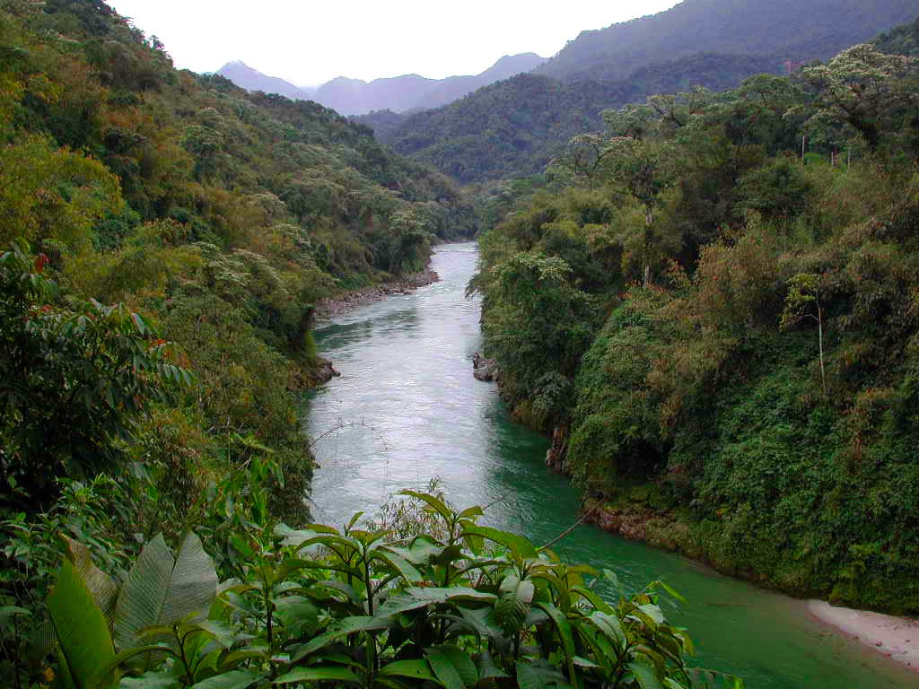 Part of Myanmar's Vast Forested Area