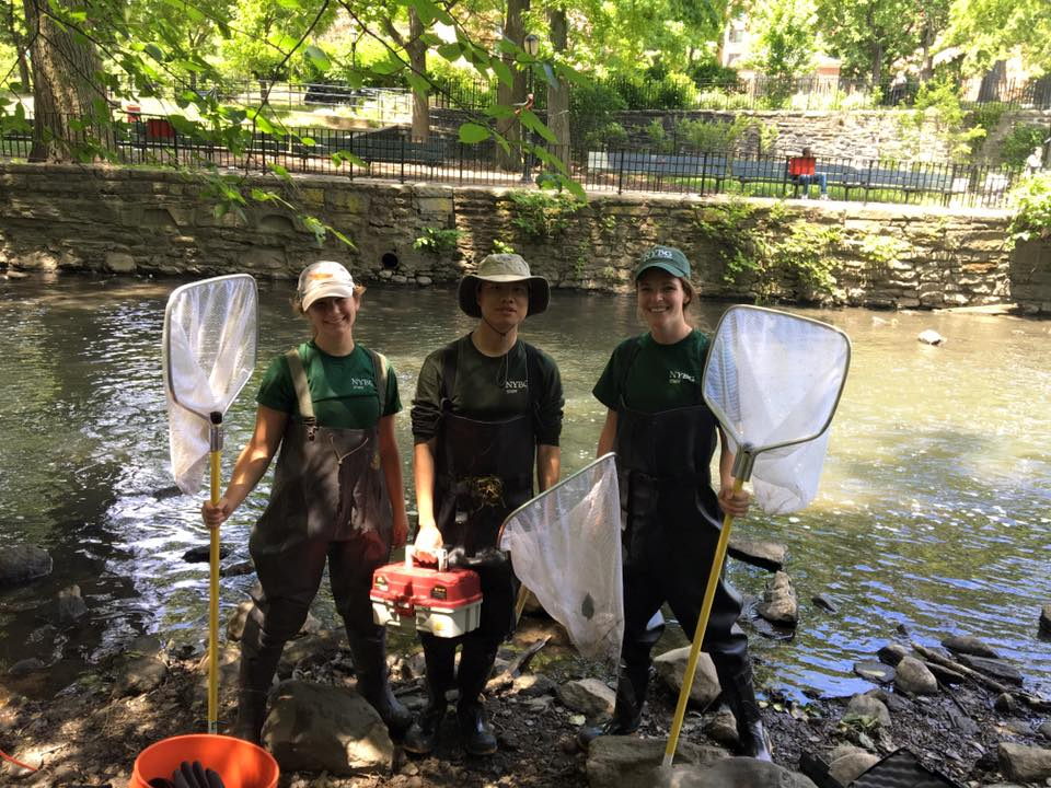 Forest interns, left to right: Laura Booth, Zihao Wang, & Elsie Spencer