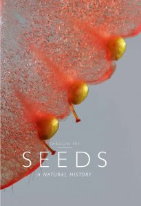Seeds A Natural History