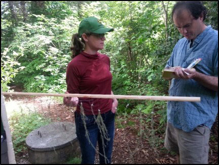 Transplanting a species of hanging lichen