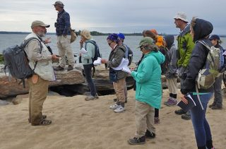 Several Urban Naturalist students working on a sandy shore.