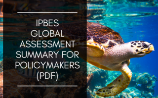 Image of IPBES assessment