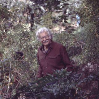 Photo of Roberto Burle Marx