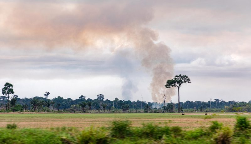 Photo of a forest fire in Rondonia