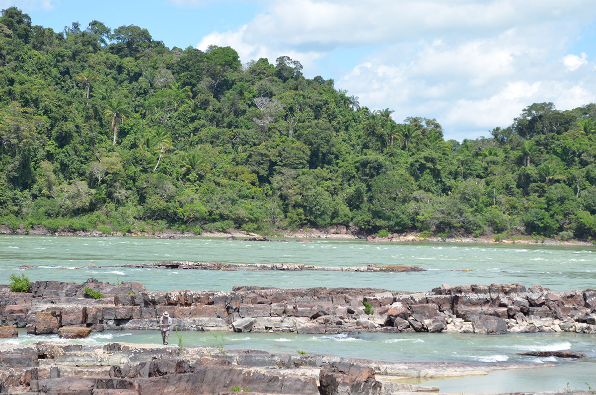 Rain forest lines the banks of the Tapajós.