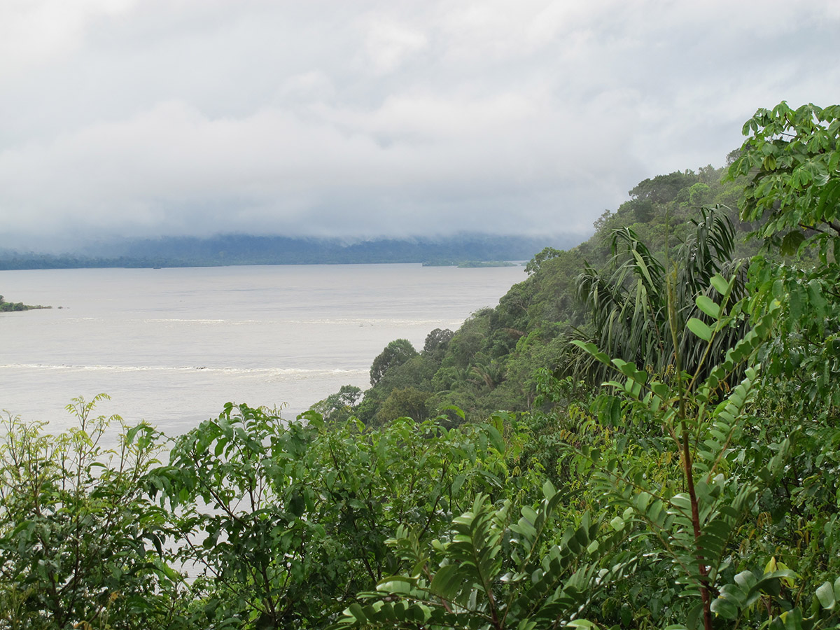 Low-hanging clouds along the Tapajós shroud the rain forest.