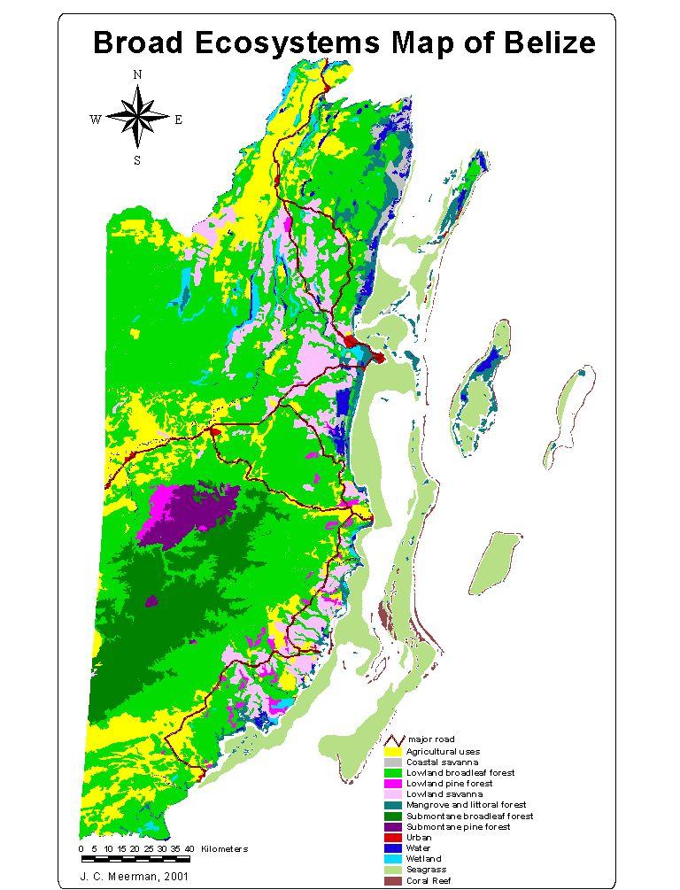 Ethnobotany And Floristics Of Belize Belize Maps - Belize political map