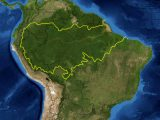 Image of South America highlighting the Amazon region