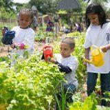 Three children watering plants.