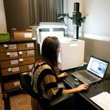 Scientist working on scans from the digital herbarium
